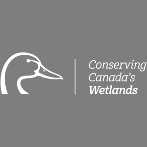 Conserving Canada's Wetlands
