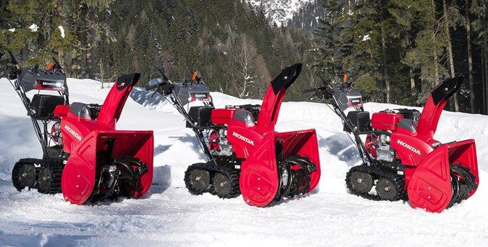 Snowblower Service Special